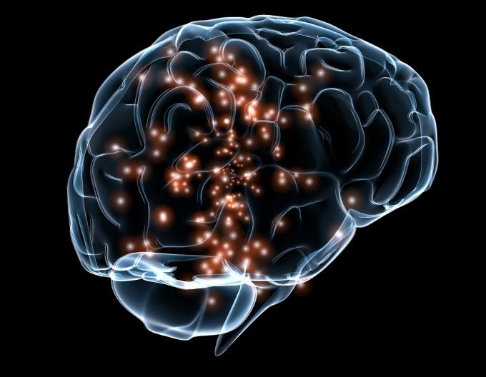 Neuropharmacology Photo