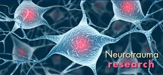 Neurotrauma Photo