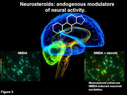 Neurosteroids and TBI Photo