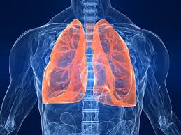 COPD Diagnosis and Diagnostics  Photo