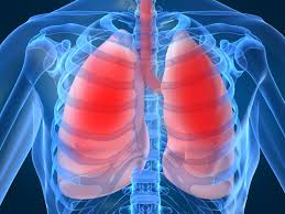 Drugs Acting on COPD Photo