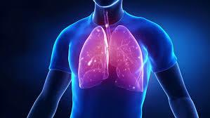 Tuberculosis Photo