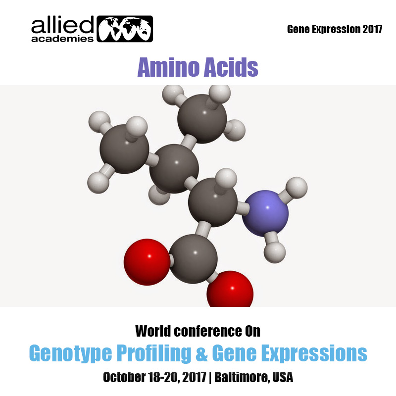 Amino Acids Photo