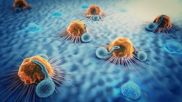 Immunology of Infections Photo