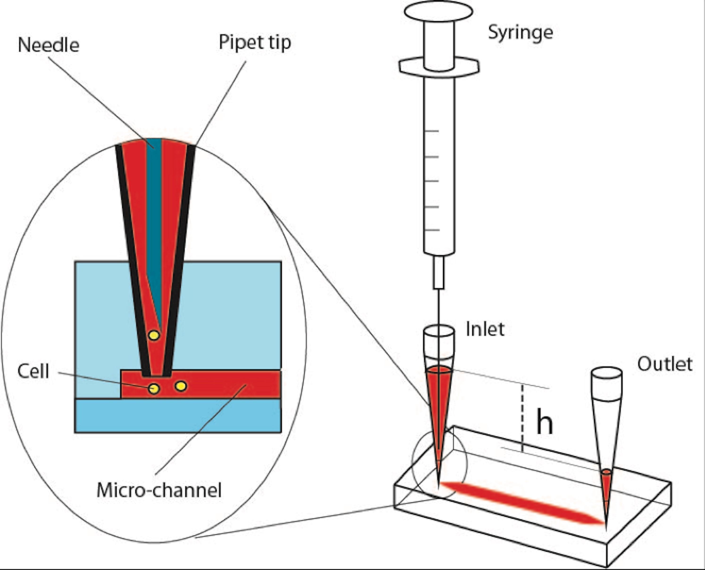 Advent of Microfluidics  Photo