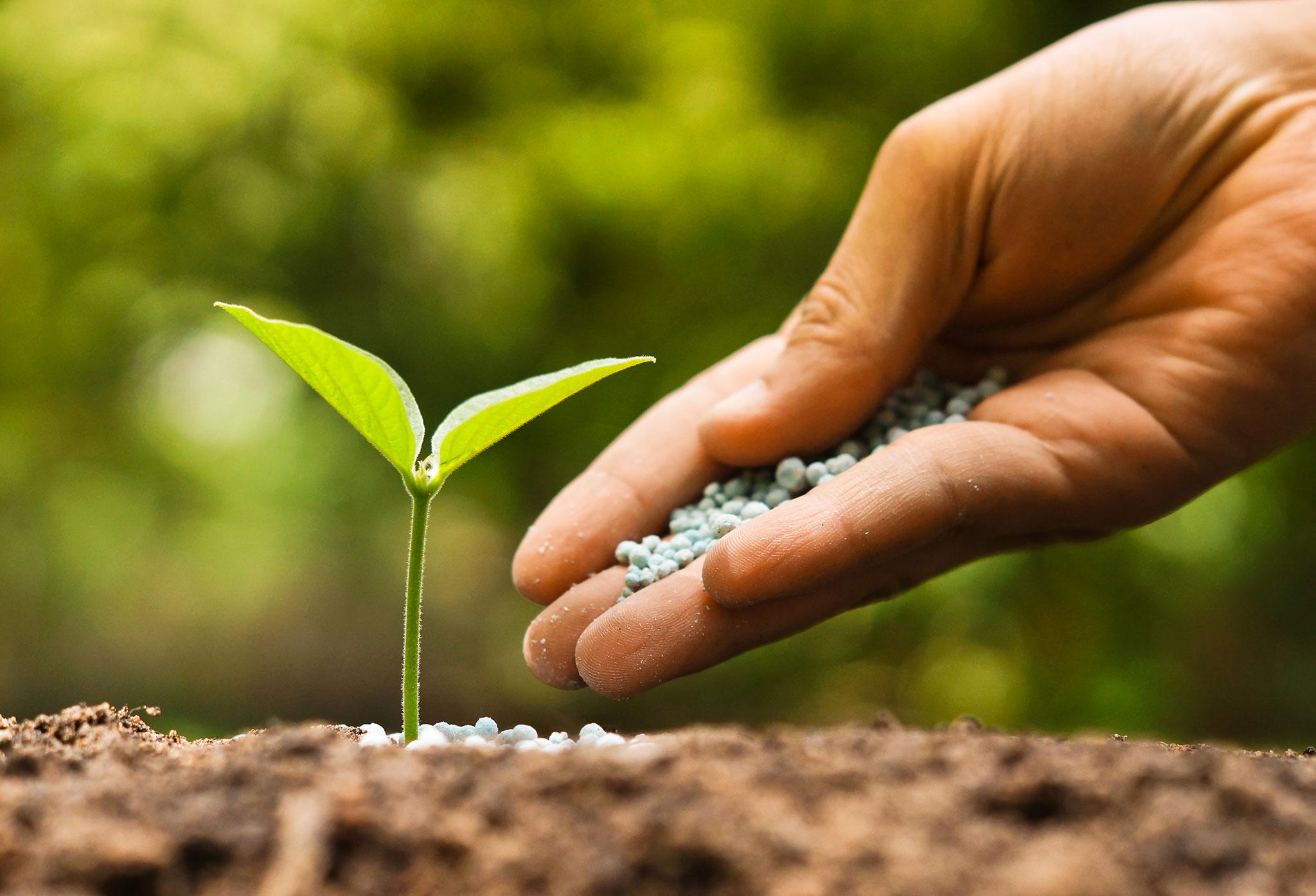 Environmental Biotechnology Photo
