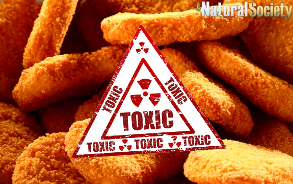 Food Toxicology Photo