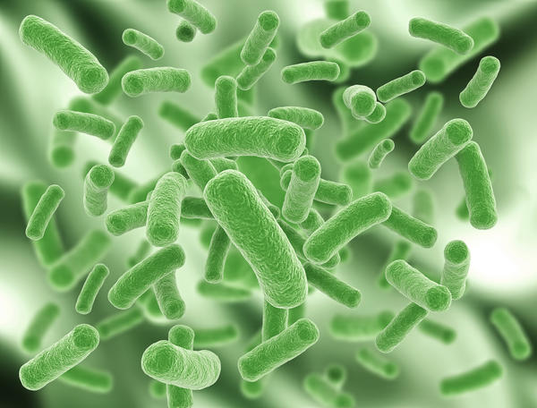 Bacterial Skin Infections Photo