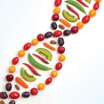 Nutrigenomics Photo