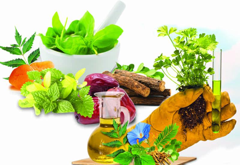 Unani Herbal Medicine Photo