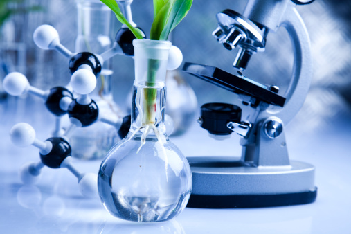 Organic Chemistry in Bio-Technology Photo