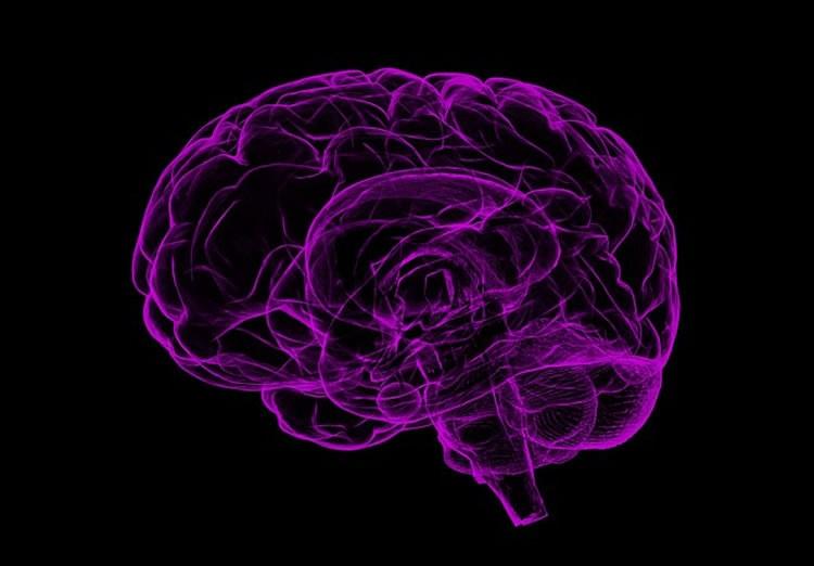 Dementia and Alzheimer's disease - Most Prevalent neurodegenerative diseases   Photo