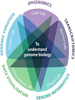 Genome Informatics Photo