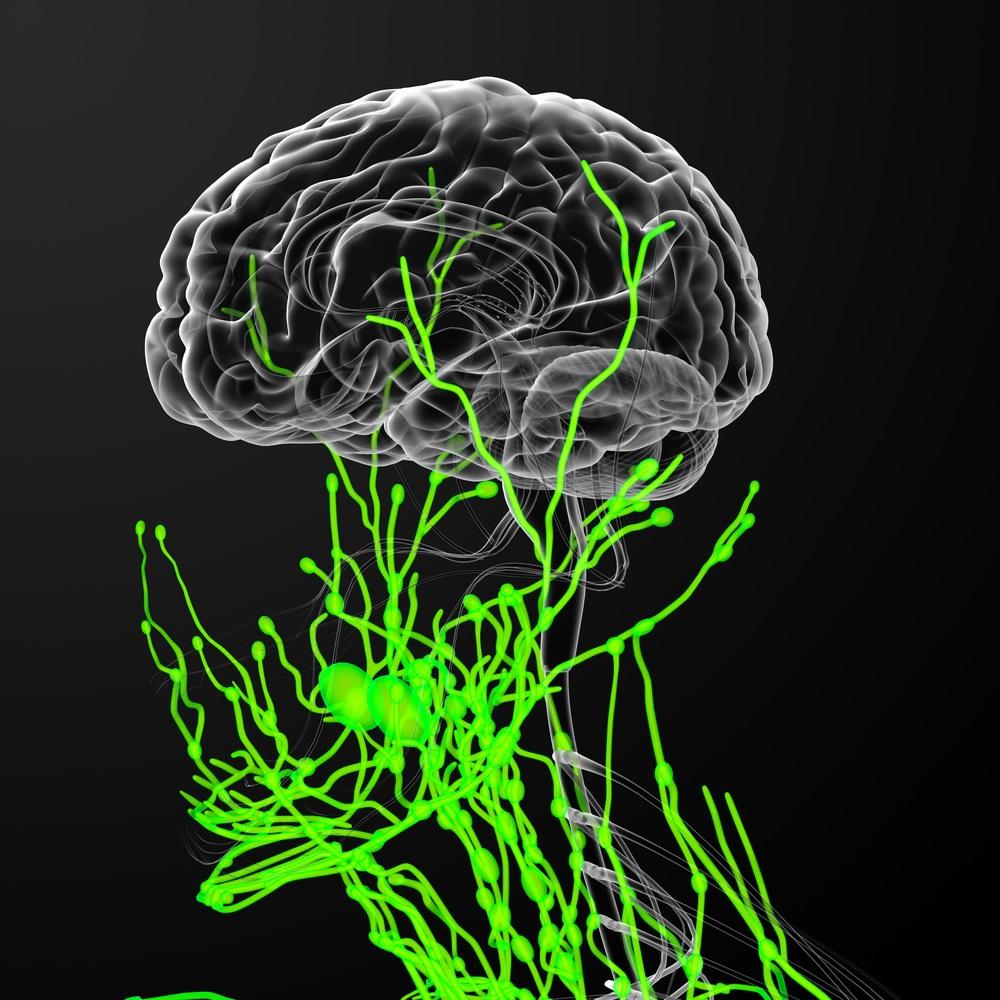 Neuropsychopharmacology Photo