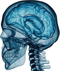 Neurosurgery Photo