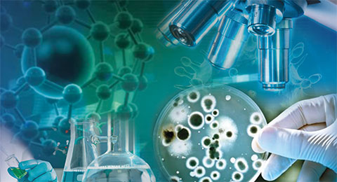 Current and Future Advancement in Clinical and Medical Microbiology Photo