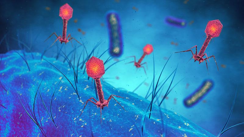 Clinical Virology Photo