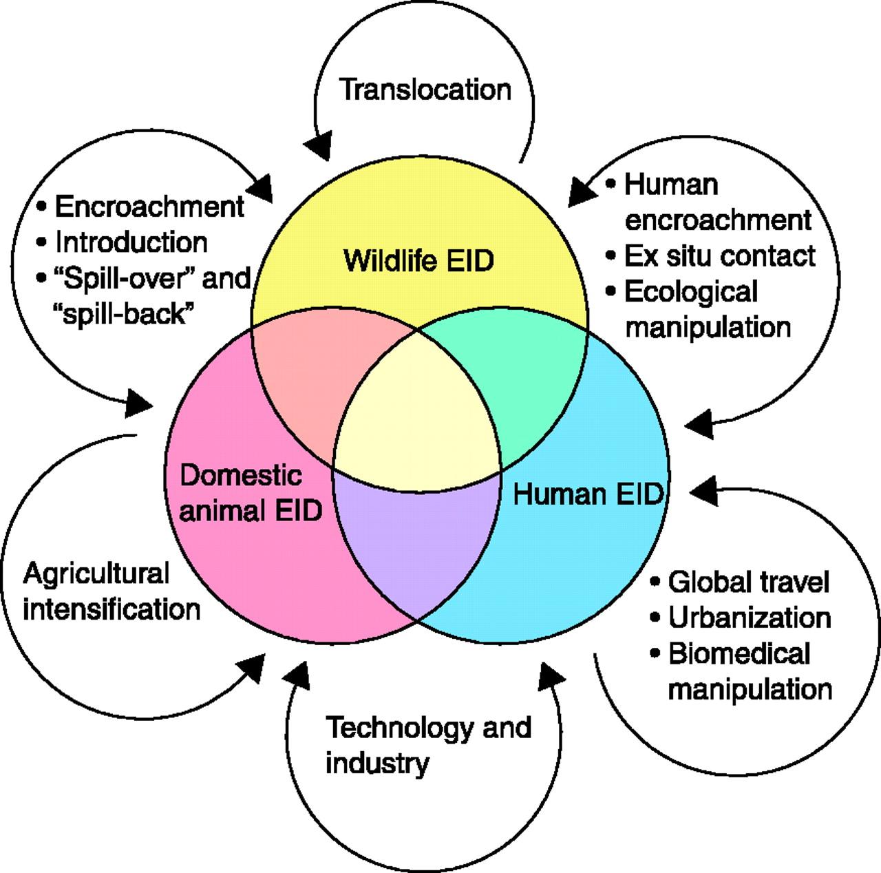 Emerging Diseases  Photo