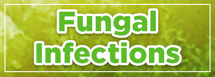Fungal Infections Photo