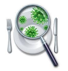 Foodborne Diseases Photo