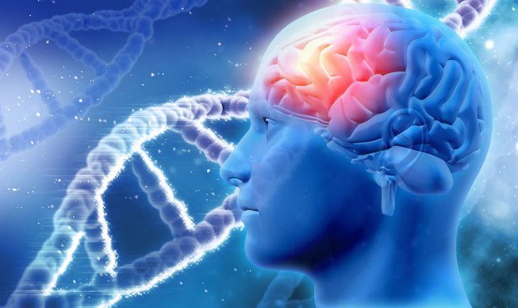 Neurogenetics Photo