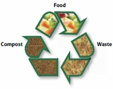 Food Waste Recycling Photo