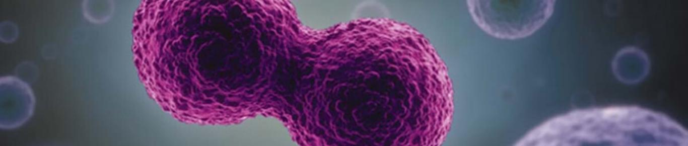 Molecular Biology 2020 Banner