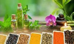Arabic and Unani medicine Photo