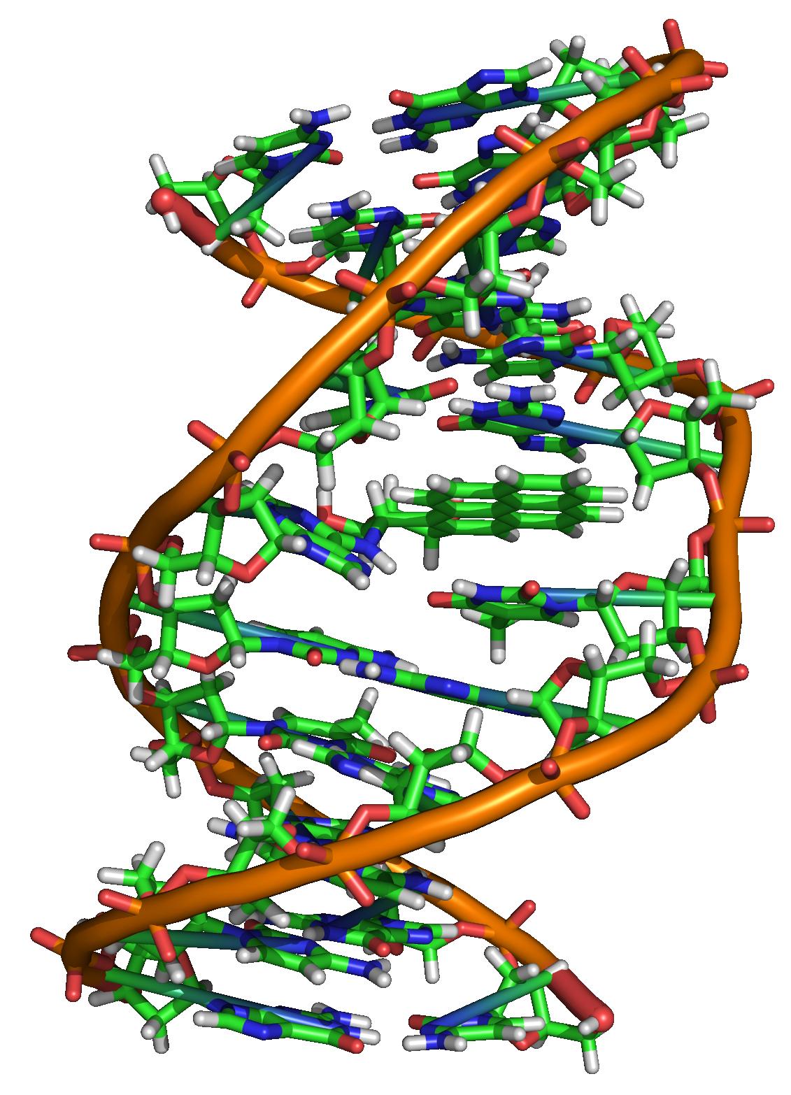Bio-Ceramics and Polymer Biomaterials Photo