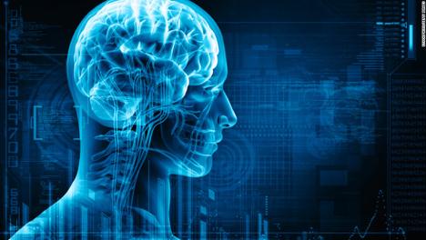 Neuroscience and Neurological Disorders Photo