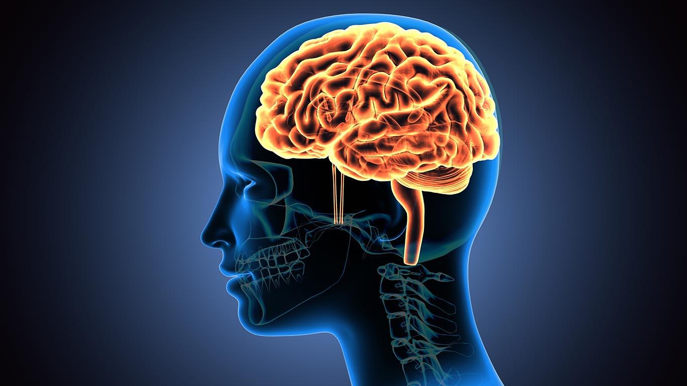 Neurology and Neurophysiology Photo