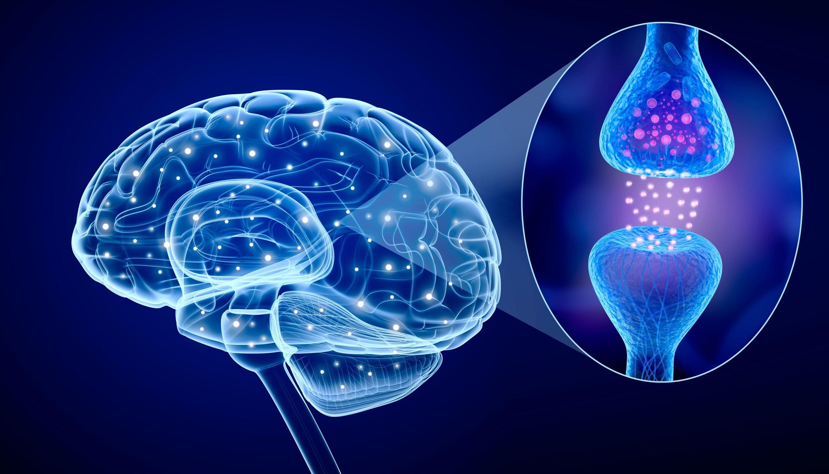 Parkinson's Diseases Photo