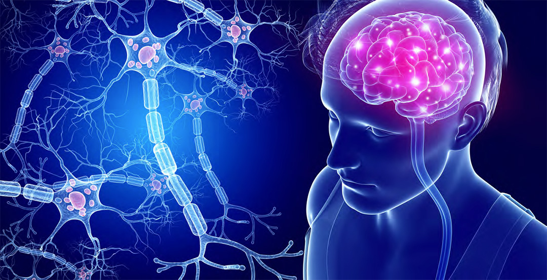 Neurodegeneration Photo
