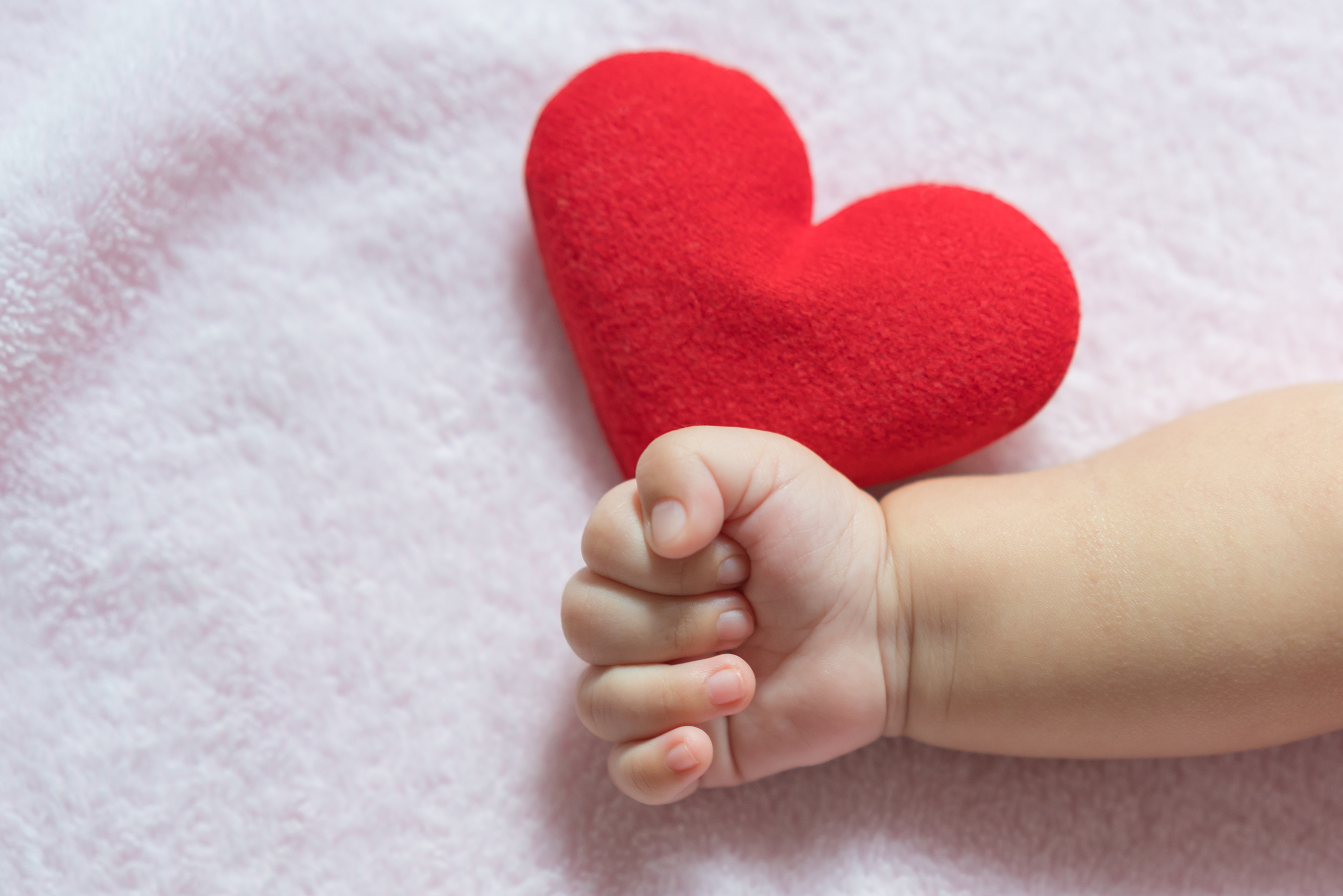 Pediatric Cardiology Photo