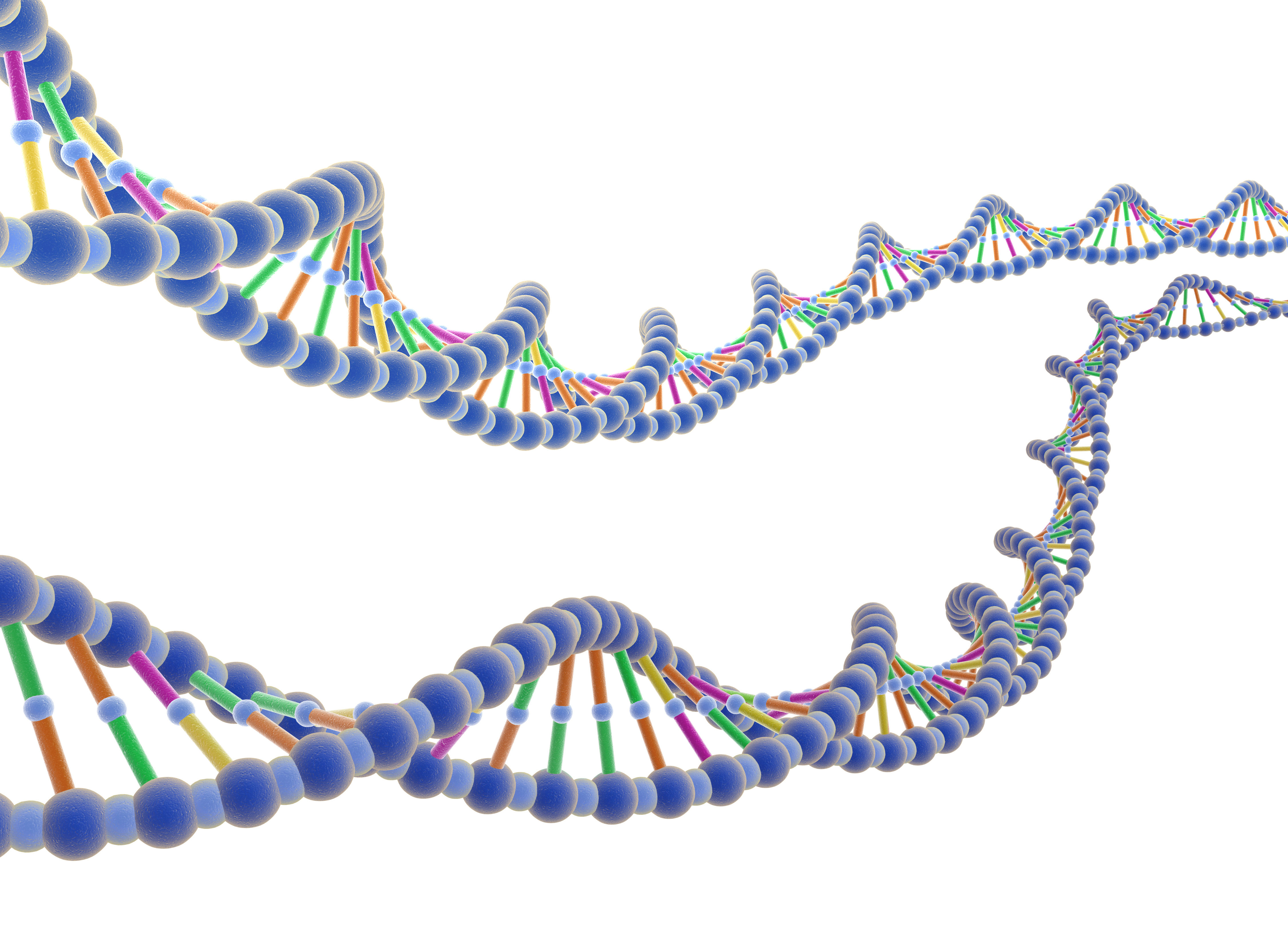 Genetic based Biomarkers and Next generation sequencing  Photo