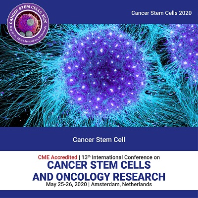 Cancer Stem Cell Photo
