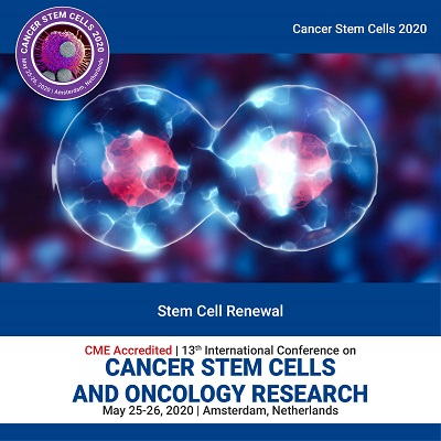 Stem Cell Renewal Photo