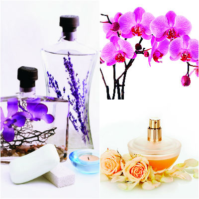 The Science of Fragrances and Cosmetics Photo
