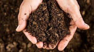 Soil Sciences Photo