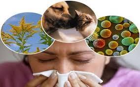 Immunogenicity Photo