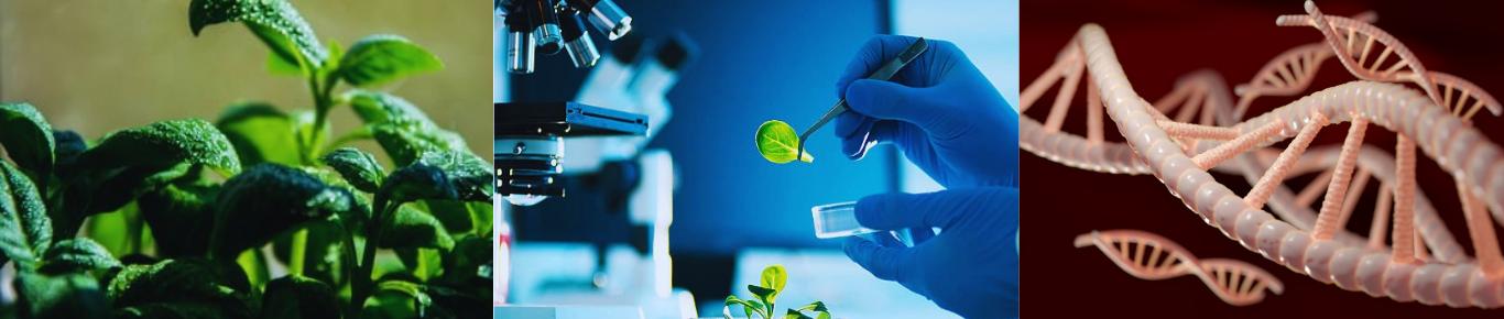 Biotechnology Summit 2021 Banner
