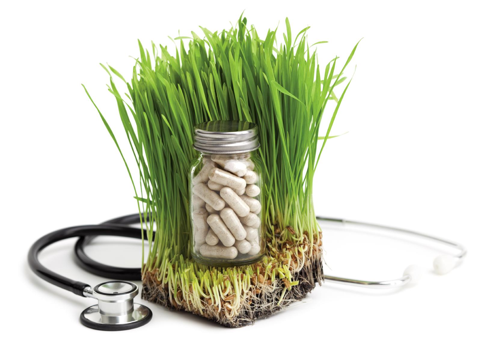 Holistic Medicine Photo