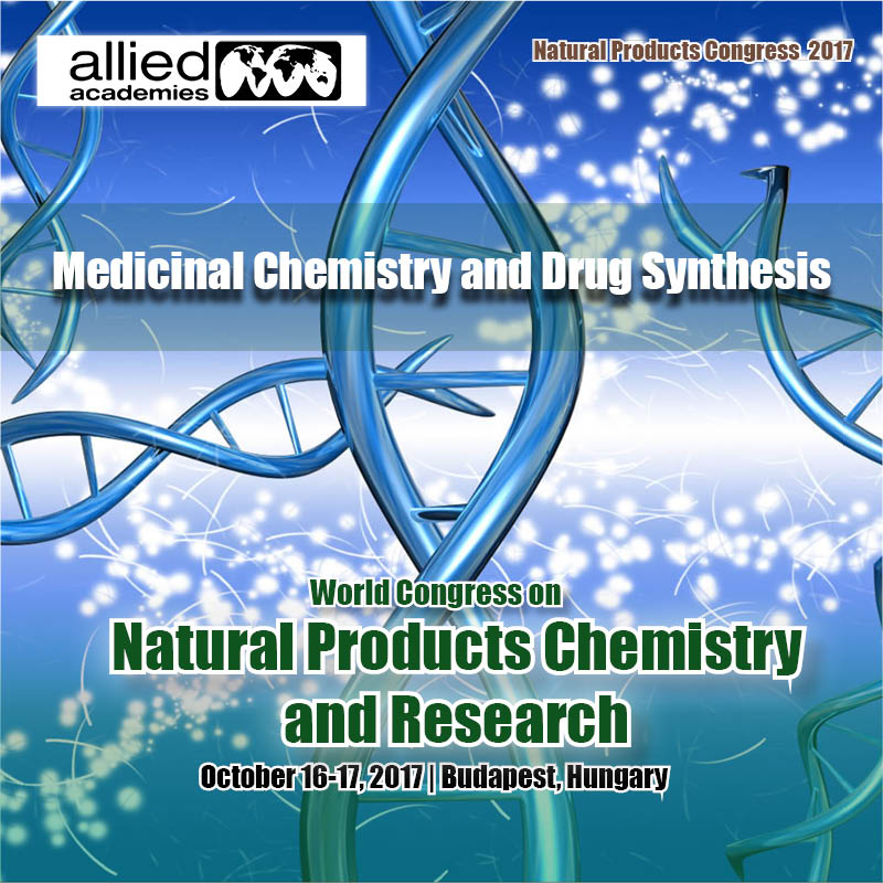 Medicinal Chemistry and Drug Synthesis Photo