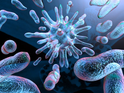Case Reports: Medical Microbiology & Microbial Infections Photo