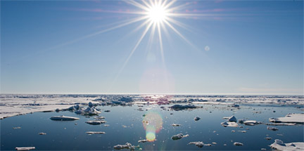 Oceanography and Marine Ecosystems Photo