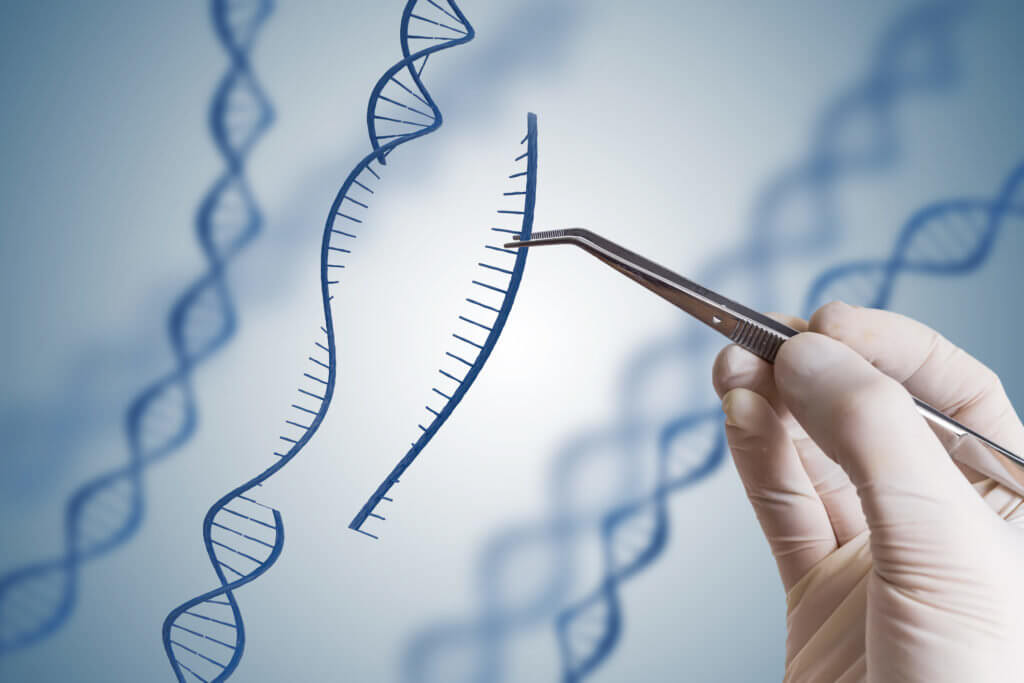 Genetic Engineering and rDNA technology Photo