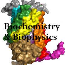 Biotransformation and Biocatalyst Photo