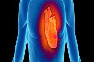 Cardiac Imaging Photo