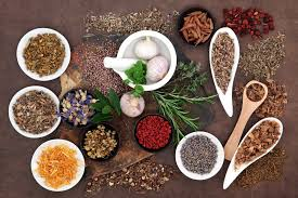 Traditional Use & Safety of Herbal Medicines Photo