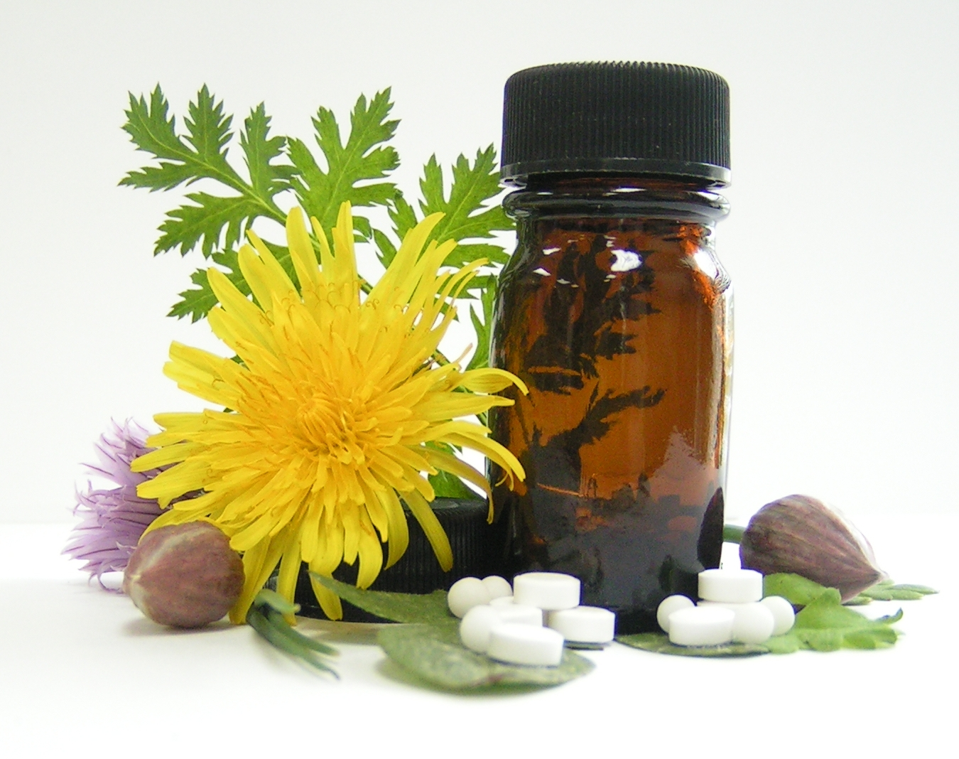 Natural Products Drug Discovery Photo